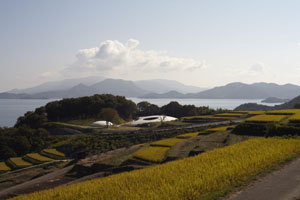 New views: The museum's fluid forms reveal anew the beauty of Teshima's landscape.
