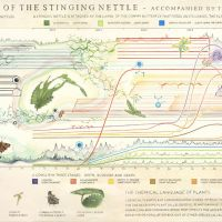 Christine Odlund's 'Stress Call of the Stinging Nettle' (2010) | COURTESY GALLERI RIIS, OSLO/STOCKHOLM, PHOTO BY JEAN-BAPTISTE BERANGER