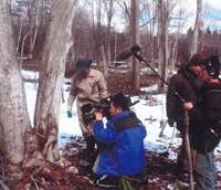 Forester Mr. Matsuki and television crew at an uri hada kaede maple -- about to be tapped for sap. | PHOTOS BY C.W. NICOL / AFAN WOODLAND TRUST