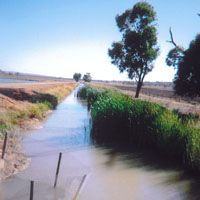 An irrigation channel brings hope to the New South Wales region