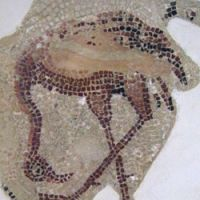 A greater flamingo, depicted in mosaic | MARK BRAZIL PHOTOS