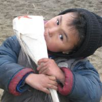 A boy chomps on a chunk of baleen from a grey whale.