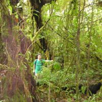 The author deep in the Monteverde cloud forest of Costa Rica, which gets a whopping 3,000 mm of rain a year.