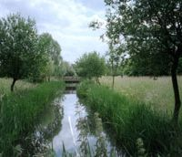 The Wetland Centre area in West London | C.W. NICOL PHOTO