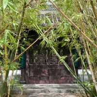 Hidden delight: A tunnel of bamboo that leads to the finely carved doors of a teahouse creates a private, intimate ambience even before the first drop is sipped.