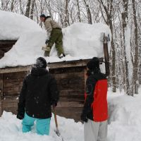 Many hands: My three Australian visitors make light work of clearing the sauna's roof.