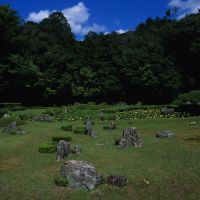 Nature nurtured: The 15th-century Zen garden at Joei-ji Temple (above) has a near-occult vitality, with its the rock arrangements (below) often seeming almost animate. Bottom: It is, too, a place rich in grasses, flowers and leafy backdrops. | STEPHEN MANSFIELD