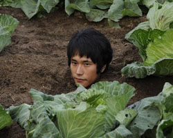 Cabbage-patch kid: Kenichi Matsuyama in 'Ultra Miracle Love Story' | © 2009