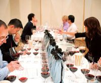 Ten international and 25 Japanese judges tasted 100 to 110 wines a day at the 11th Japan Wine Challenge last month. | JAPAN WINE CHALLENGE