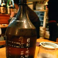 How I learned to stop worrying and love the shochu
