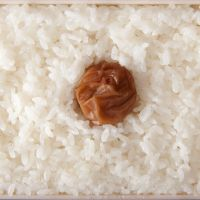 National pride:  Hinomaru bento, a rectangular bed of plain white rice with a single umeboshi in the middle, is designed to resemble the Japanese flag. Umeboshi, made from pickled ume (a relative of the plum and apricot), are a much-loved traditional delicacy. | MAKIKO ITOH