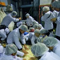 Bottled with love: A group of budding sake-makers on the Karasuyama Taiken course (below) prepare rice they grew themselves for fermentation into alcohol. | MELINDA JOE