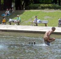 A park veteran takes a skinny dip in the pool.