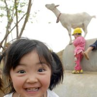 Aika Yasunaga wanted goats at Asaka Doronko  so that children could witness the birth and death of animals.