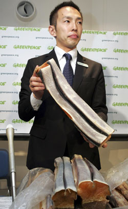 Junichi Sato presents whale meat to journalists in Tokyo on May 15 that Greenpeace claims it intercepted to prove large-scale fraud by whalers. | AP PHOTO