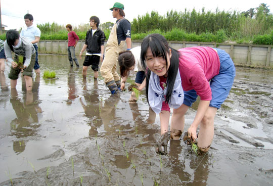 Muddy but fun: Students of Tokyo community school Marunouchi Morning University plant rice in a paddy in Yokoshibahikari, Chiba Prefecture, on May 16. | ERIKO ARITA PHOTOS