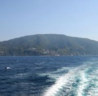 Island idyll: Mikura Island seen from the boat back to Tokyo.