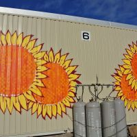 Hope blooms: Paintings by Japanese-Brazilian graffiti artist Titi Freak decorate the end walls of terraced housing units at the Kaisei Temporary Housing Complex in Ishinomaki. Flowers were a subject that several residents asked the spray-can artist to paint.