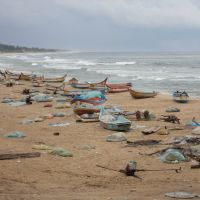 Tsunami lessons for Tohoku from Tamil Nadu