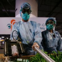Green screen: Food inspectors check vegetables imported from Japan at the airport cargo terminal in Hong Kong in April 2011. | AP