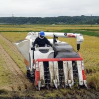 Reaping the sown: A combine harvester on one of 341 rice paddies managed by J-Rap.