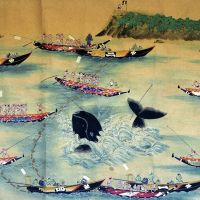 Taiji hunts continue to anger, confound readers