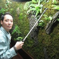 Greenkeeper: Kokemori director Norihiro Kotake tends to an indoor display of moss that helps purify the air. | EDAN CORKILL PHOTOS