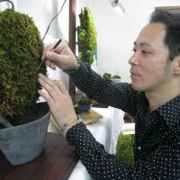 Green thumb: Norihiro Kotake tends to a work of moss art