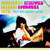 Shortcake Collage Tape 'Spirited Summer'