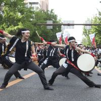 Road show: Street performers will take to Osaka's Midosuji Boulevard this weekend.