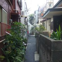 Trojan horse: Neighbors question the legality of this rental nagaya (townhouse), which was recently built near Jiyugaoka in Setagaya Ward.