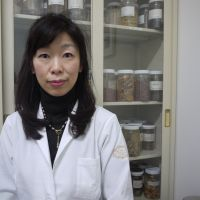 Natural help: Yoko Kimura, a kanpō specialist doctor at the Tokyo Women's Medical University's Institute of Oriental Medicine, says kanpō can  help patients cope with physical and mental imbalances associated with aging and hormonal changes. | TOMOKO OTAKE