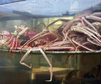 Crabs up for grabs — a Kinosaki specialty