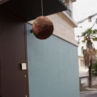 Street life: A hanging ball is this sake joint's only sign; rock-hard pecs on parade.