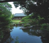 Special scene: A view across the pond in the garden at Shibamata Taishakuten | ADRIAN BENNETT PHOTOS