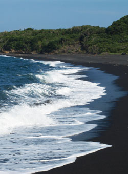 A black-sand beach on Izu Oshima