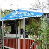 A laid-back cabana at Hiro Coffee Farm.