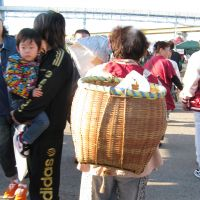 Quay point: Hachinohe's Shin Minato wharf, where 300 vendors set up their stalls at dawn on Sundays for the Tatehana Ganpeki Asaichi market that's over by 10 a.m. | WINIFRED BIRD PHOTOS