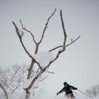 Plowing gleefully through backcountry powder at Niseko in Hokkaido. | JEFF KINGSTON PHOTOS