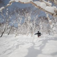 Niseko, Hokkaido