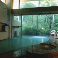 Short-stay spa plan in Hakone; oyster bar in Aoyama; New Year's buffet with Skytree views