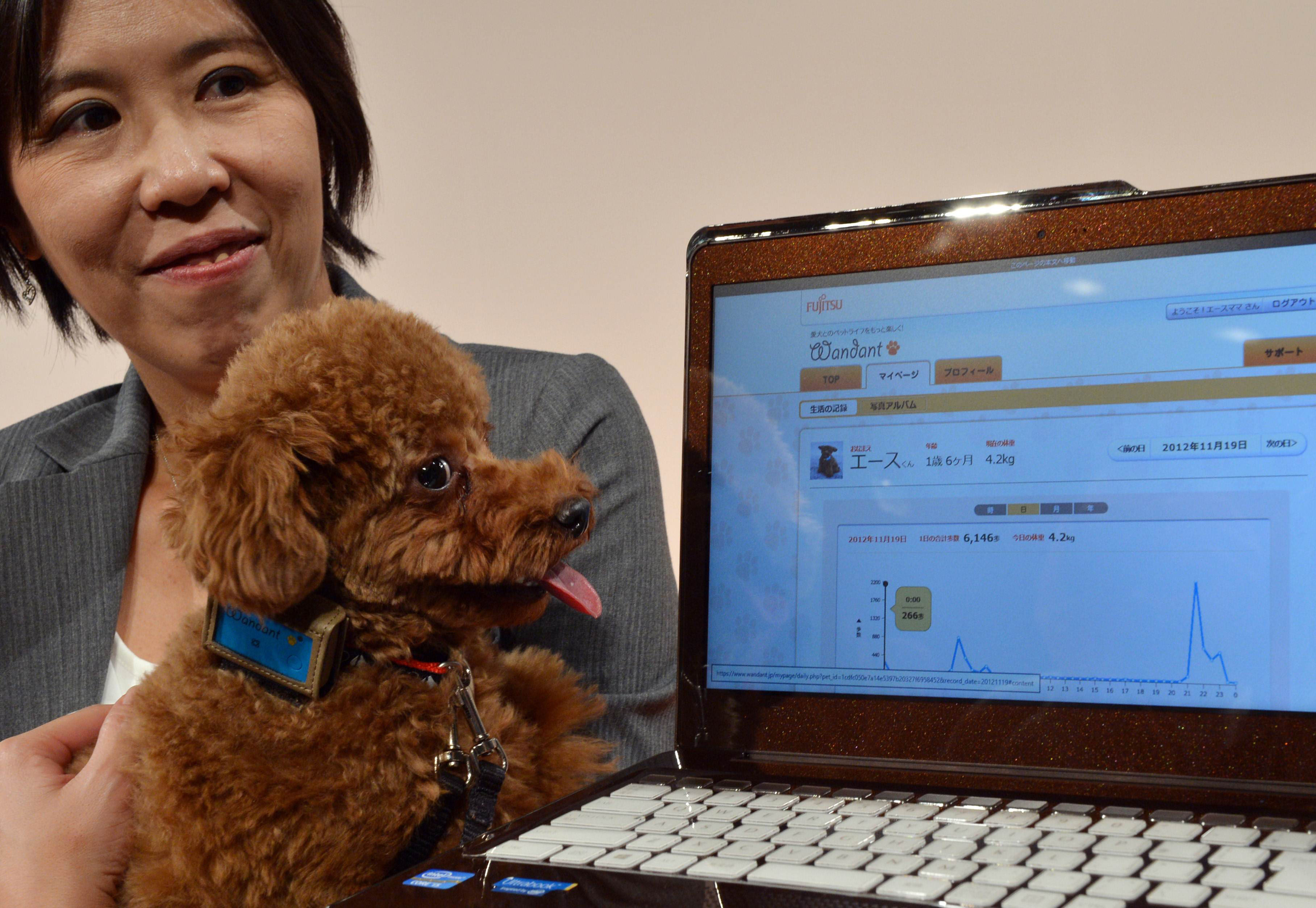 Fujitsu starts cloud tracking of dogs' health