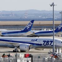 Grounded: All Nippon Airways Boeing 787 Dreamliner passenger jets are seen parked at Haneda airport in Tokyo on Jan. 18, two days after technical troubles led to the grounding of nearly all 50 of the 787s currently in use around the world. | AP