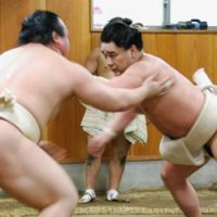 Ozeki Harumafuji practices at the Isegahama stable in Koto Ward, Tokyo on Monday. | KYODO PHOTO