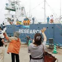In the name of science: Whalers leave the port of Shimonoseki in Yamaguchi Prefecture on Saturday aboard the Yushin Maru. | KYODO PHOTO