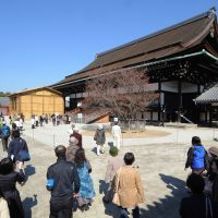 Good old days: Tourists view the Old Imperial Palace in Kamigyo Ward, Kyoto, last April 6. | KYODO
