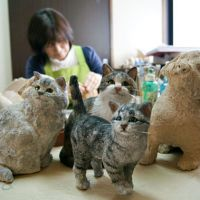 Dolls made of wood powder replicate pet cats and dogs lost in the March 2011 tsunami and earthquake.
