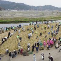 Adapting to nature: Otsuchi residents participate in an experiment to turn a pile of debris from the March 11 earthquake and tsunami into a new forest on Monday in Iwate Prefecture. | KYODO
