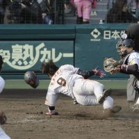 Harrowing ordeal: Yomiuri's Yoshiyuki Kamei is hit with a pitch thrown by Hanshin's Tatsuya Kojima on April 8. Kamei suffered a broken nose but wasn't taken off the Giants' roster. | KYODO
