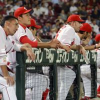 Eye on the action: Hiroshima Carp players watch their team's 2-1 home loss Tuesday to the Tokyo Yakult Swallows at Mazda Stadium. | KYODO